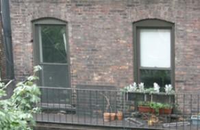 East Village Windows